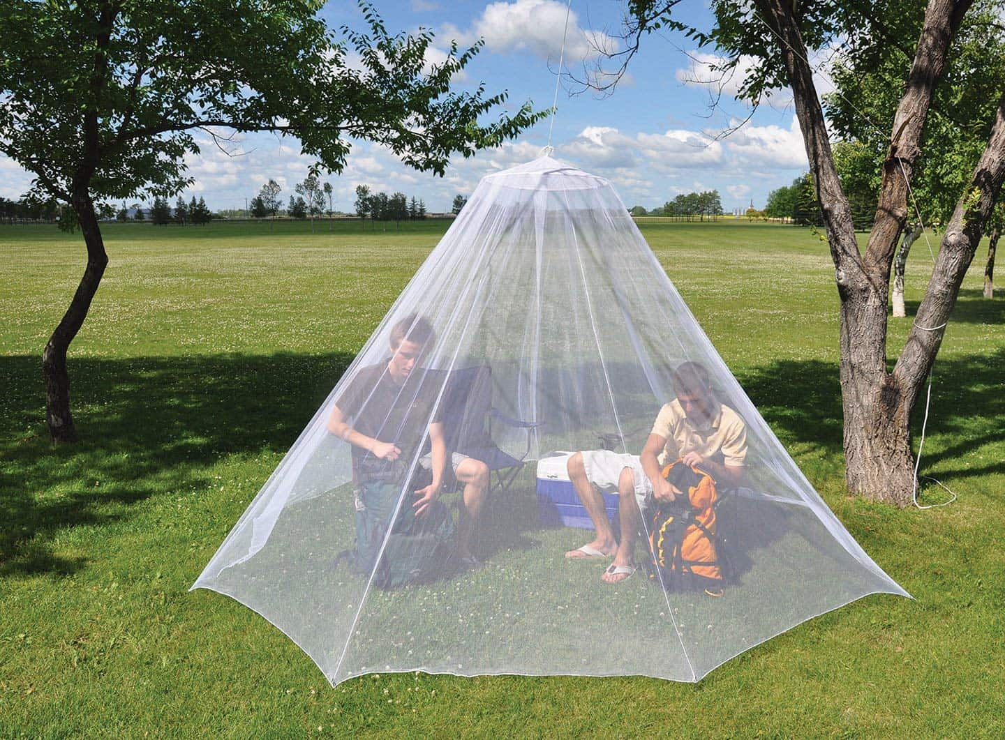 Image result for So What is Stopping You From Using A Mosquito Net? Just Get Over It, Now