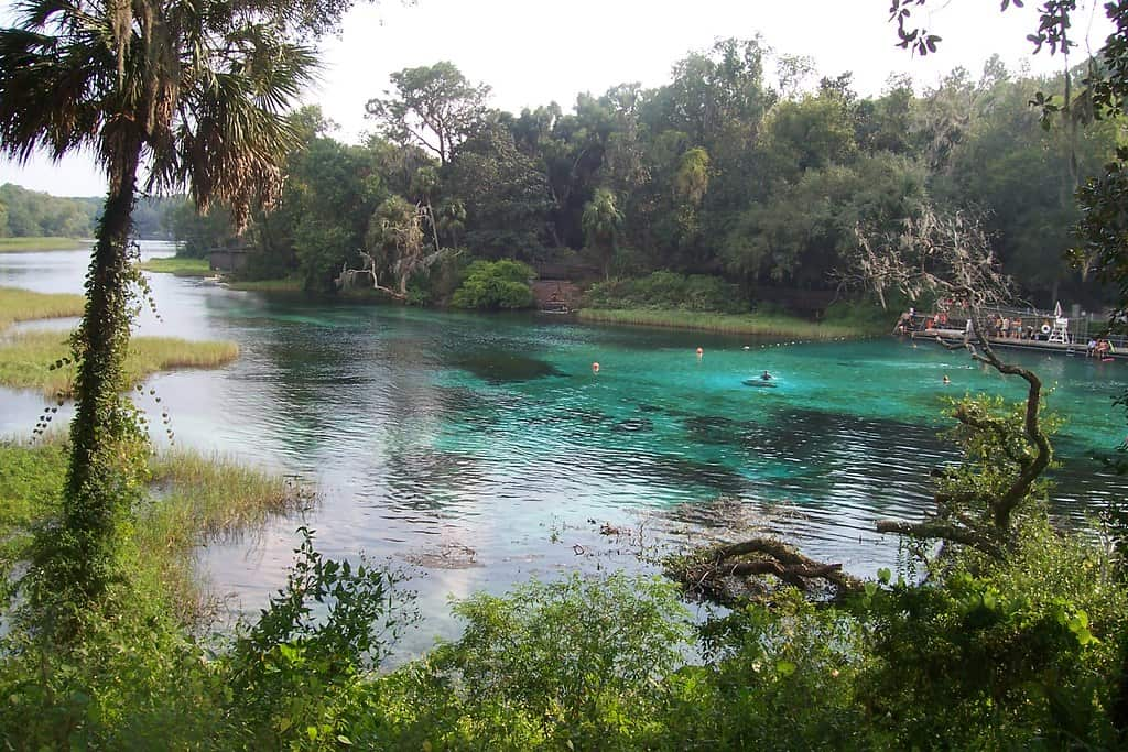 Rainbow Springs - Florida State Park