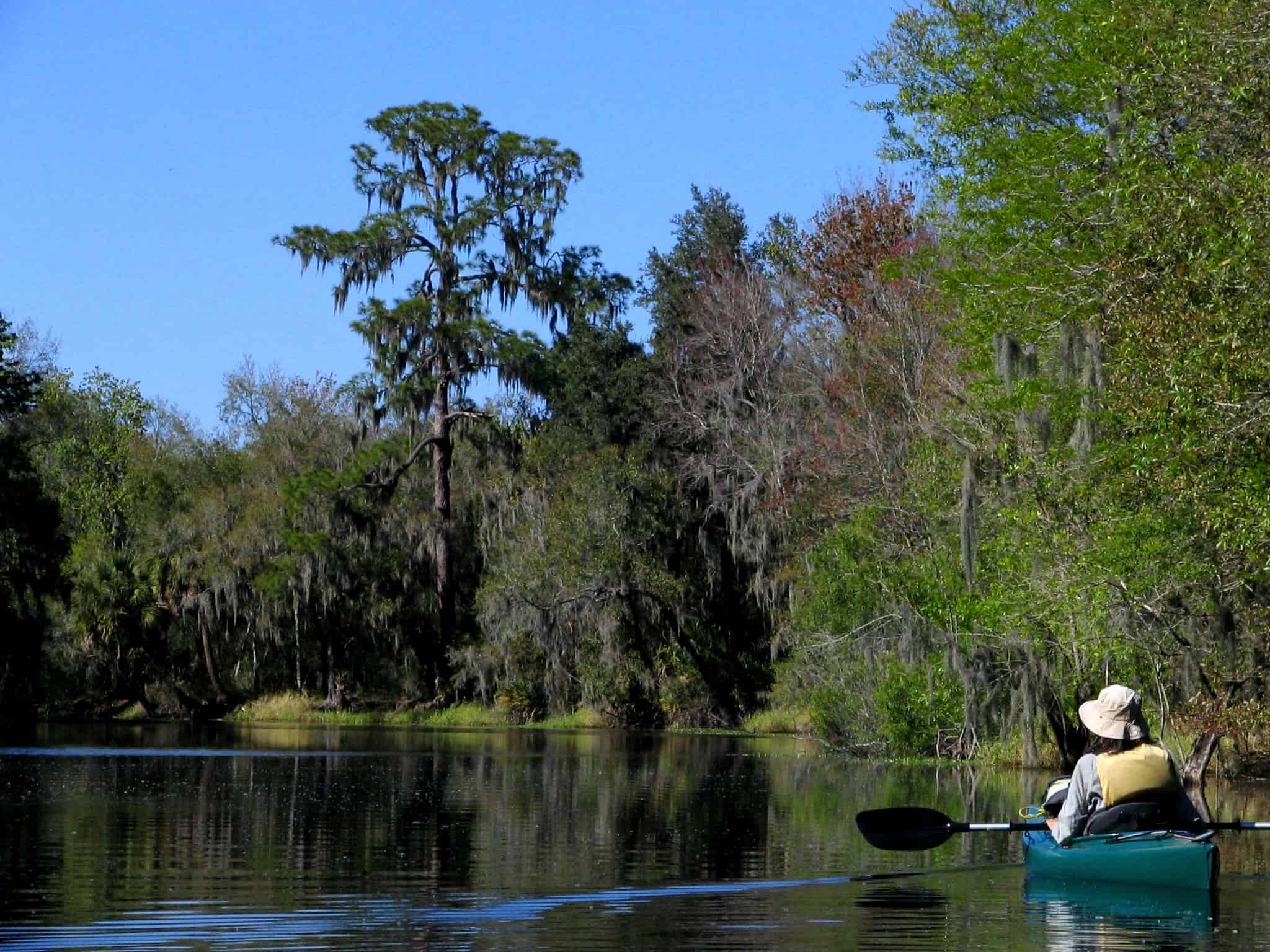 best state parks tampa