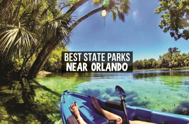 Best State Parks Near Orlando, Florida