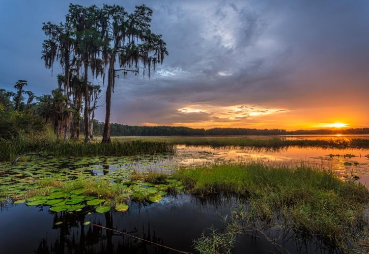 best state parks near Orlando