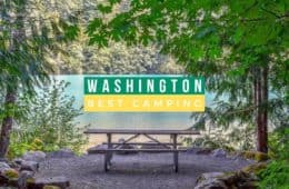 Best Camping Sites in to Check Out in Washington State