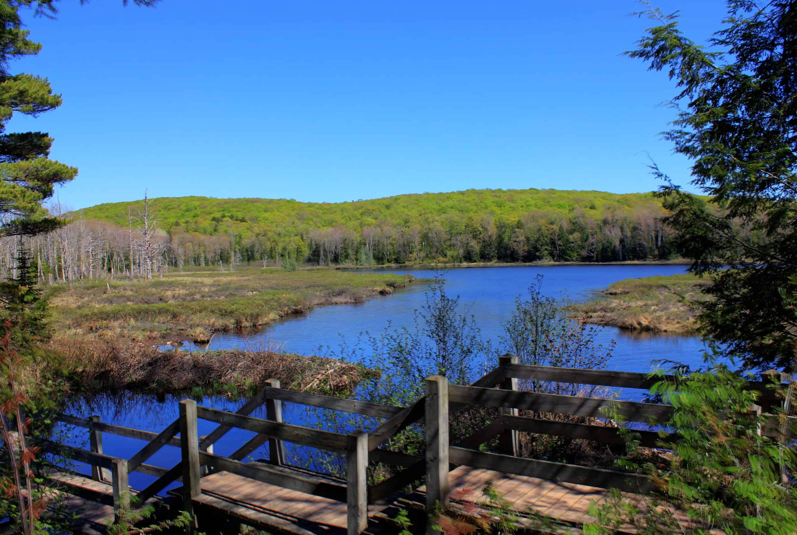 Porcupine Mountains State Park for Camping in Michigan