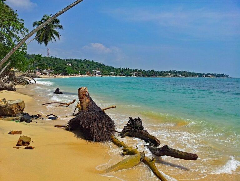 sri lanka reopening to tourists