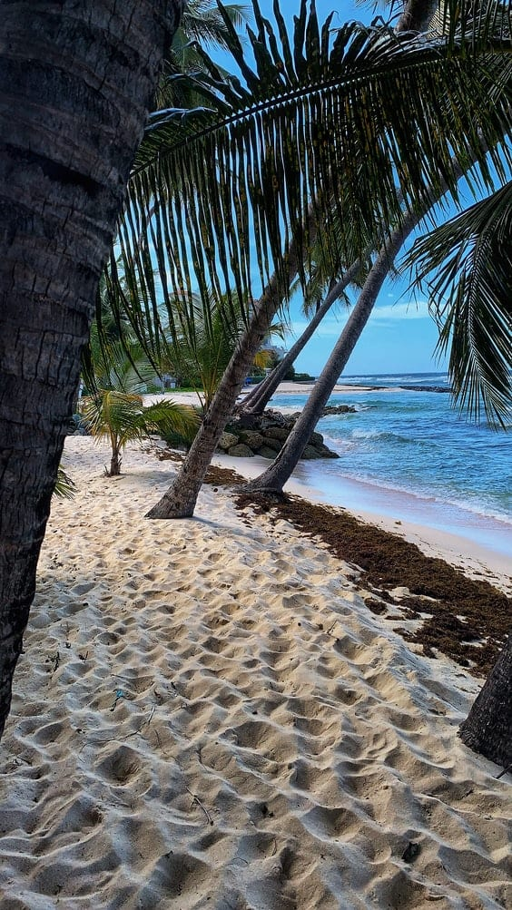 Barbados - Visas for digital nomads