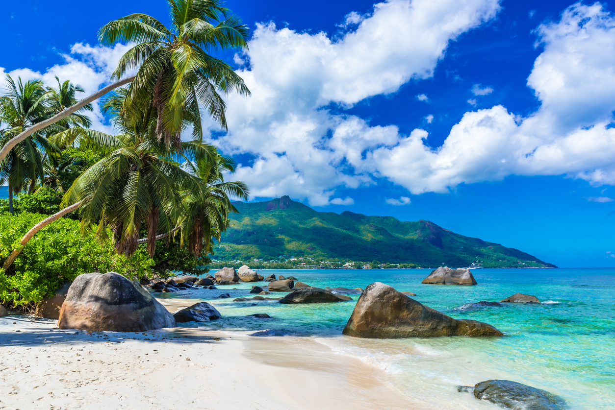 Digital Nomad Influencer Offering NFT Holders Access to Private Remote Islands